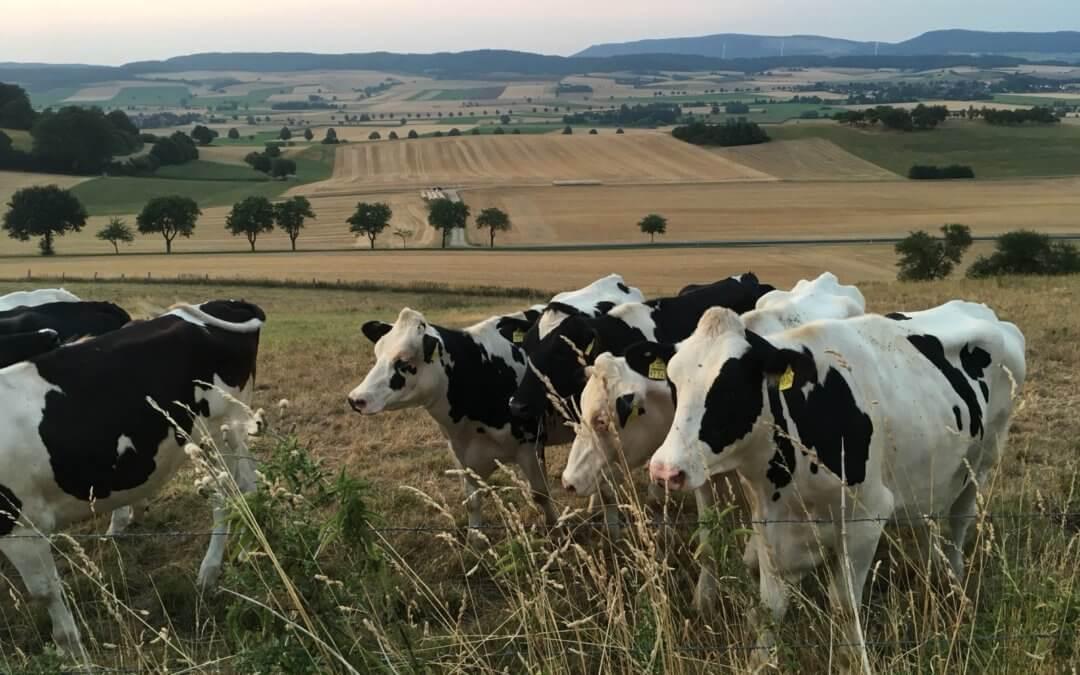 Landwirtschaft heute – das geht uns alle an.